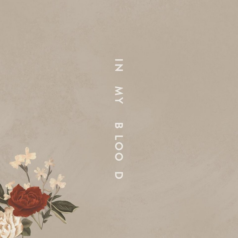 In My Blood - Shawn Mendes